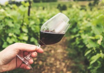 Tour One – East Sussex small wine estates – £120/person